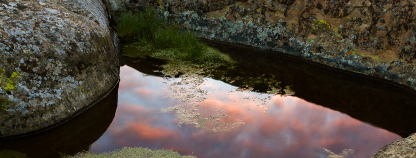 a reflective pond shows sunset. this image is near Vasco Caves Regional Preserve in Co Co County